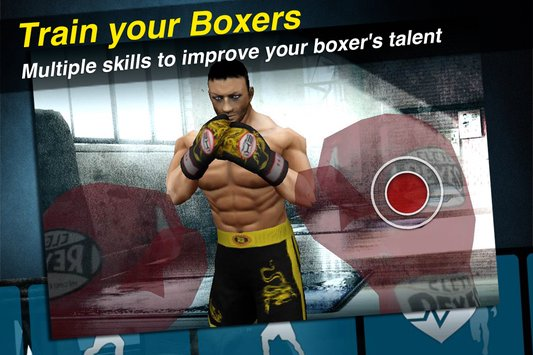 World Boxing Challenge2