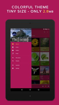 Pulsar Music Player 6