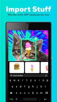 GIPHY CAM. The GIF Camera 3