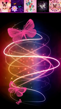 Butterfly Fashion Wallpapers6