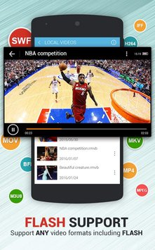 Dolphin Video Flash Player1