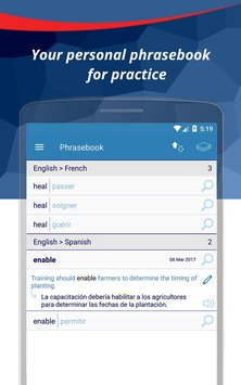 Reverso Translation Dictionary6