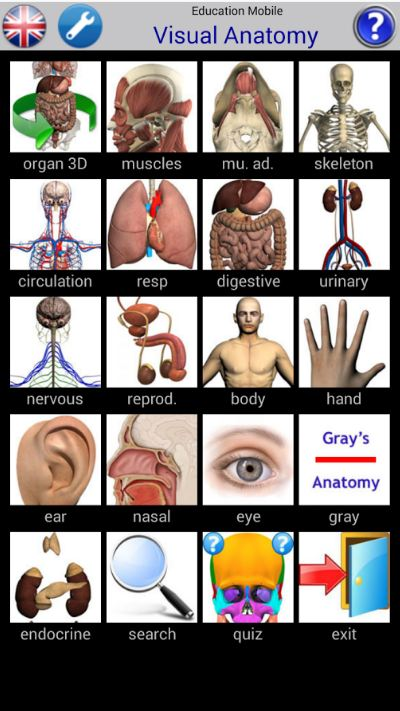 Visual Anatomy 2 1